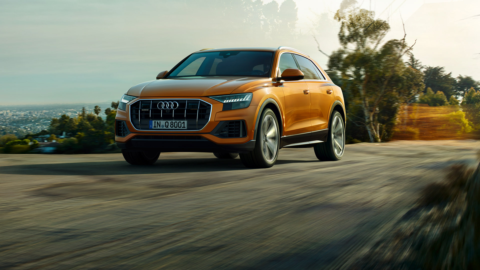Performance of the 2019 Audi Q8